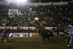 thumbnail_Cuernos Chuecos (5)